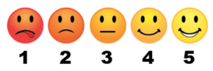 Scale of Customer Happiness